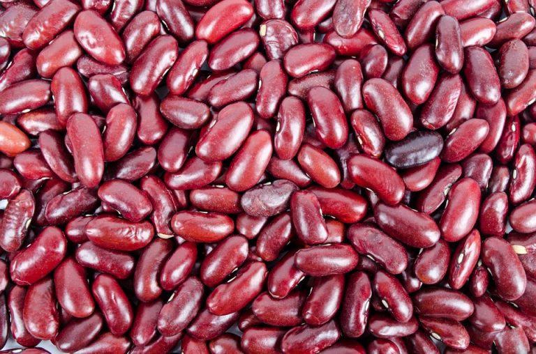 Kidney Bean Spread Recipe